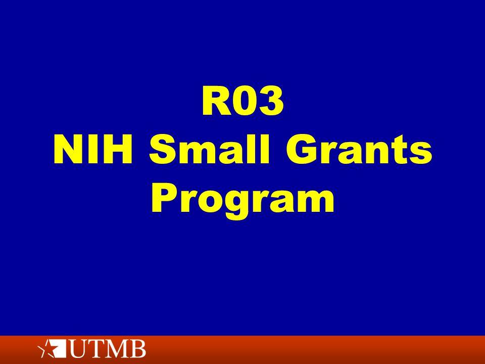 R03 NIH Small Grants Program