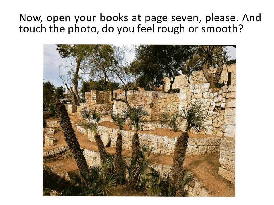 Now, open your books at page seven, please. And touch the photo, do you feel rough or smooth