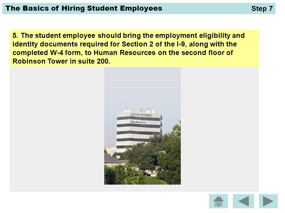 The Basics of Hiring Student Employees 5. The student employee should bring the employment eligibility and identity documents required for Section 2 o