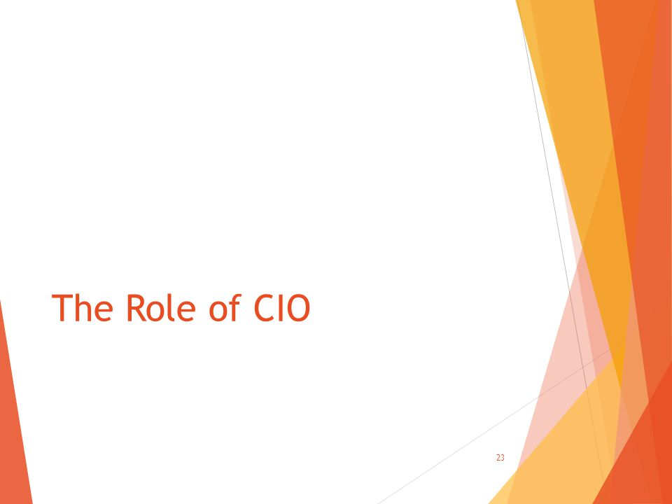 The Role of CIO 23