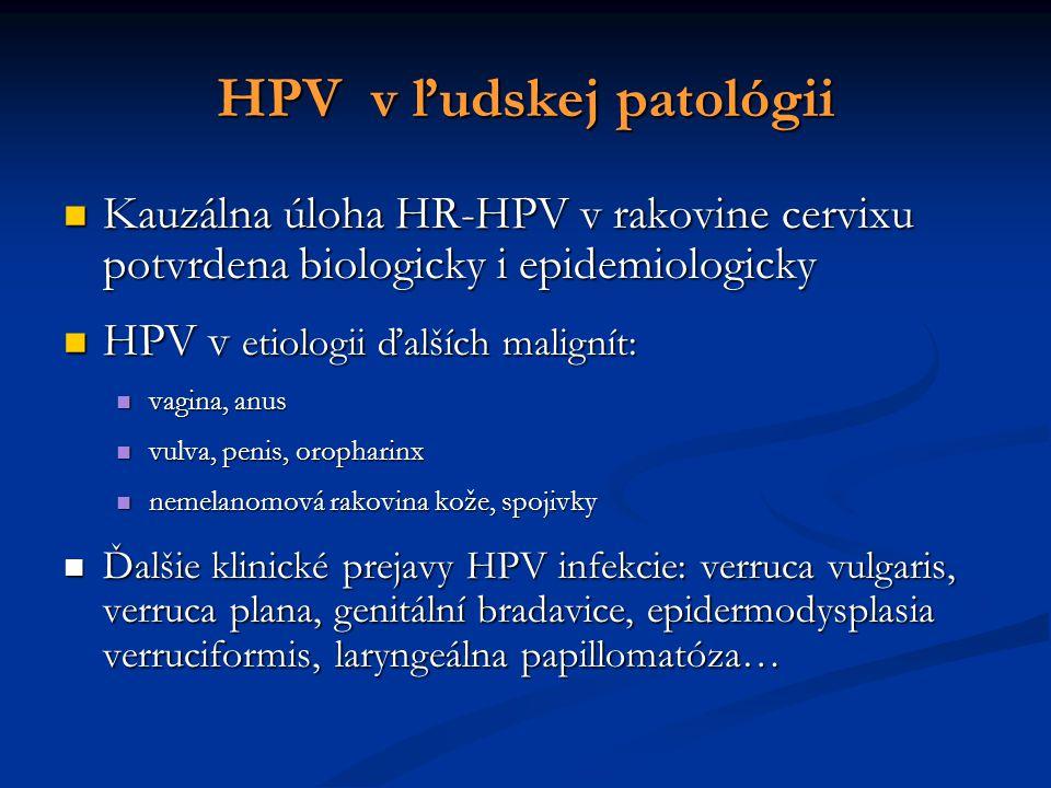 Kauzálna úloha HR-HPV v rakovine cervixu potvrdena biologicky i epidemiologicky Kauzálna úloha HR-HPV v rakovine cervixu potvrdena biologicky i epidemiologicky HPV v etiologii ďalších malignít: HPV v etiologii ďalších malignít: vagina, anus vagina, anus vulva, penis, oropharinx vulva, penis, oropharinx nemelanomová rakovina kože, spojivky nemelanomová rakovina kože, spojivky Ďalšie klinické prejavy HPV infekcie: verruca vulgaris, verruca plana, genitální bradavice, epidermodysplasia verruciformis, laryngeálna papillomatóza… Ďalšie klinické prejavy HPV infekcie: verruca vulgaris, verruca plana, genitální bradavice, epidermodysplasia verruciformis, laryngeálna papillomatóza… HPV v ľudskej patológii