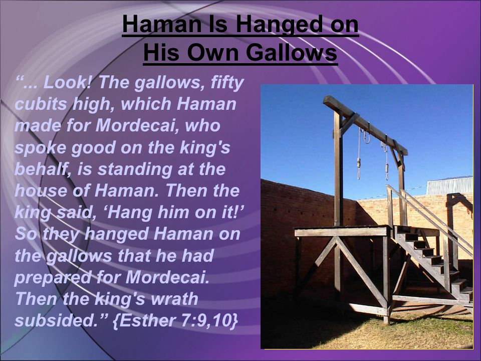 Haman Is Hanged on His Own Gallows ... Look.