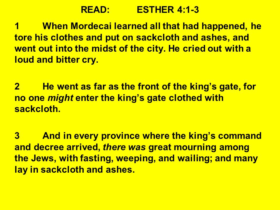 READ:ESTHER 4:12-14 12They told Mordecai Esther's words.