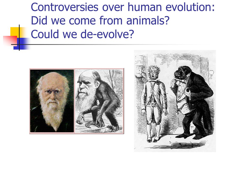 Controversies over human evolution: Did we come from animals? Could we de-evolve?
