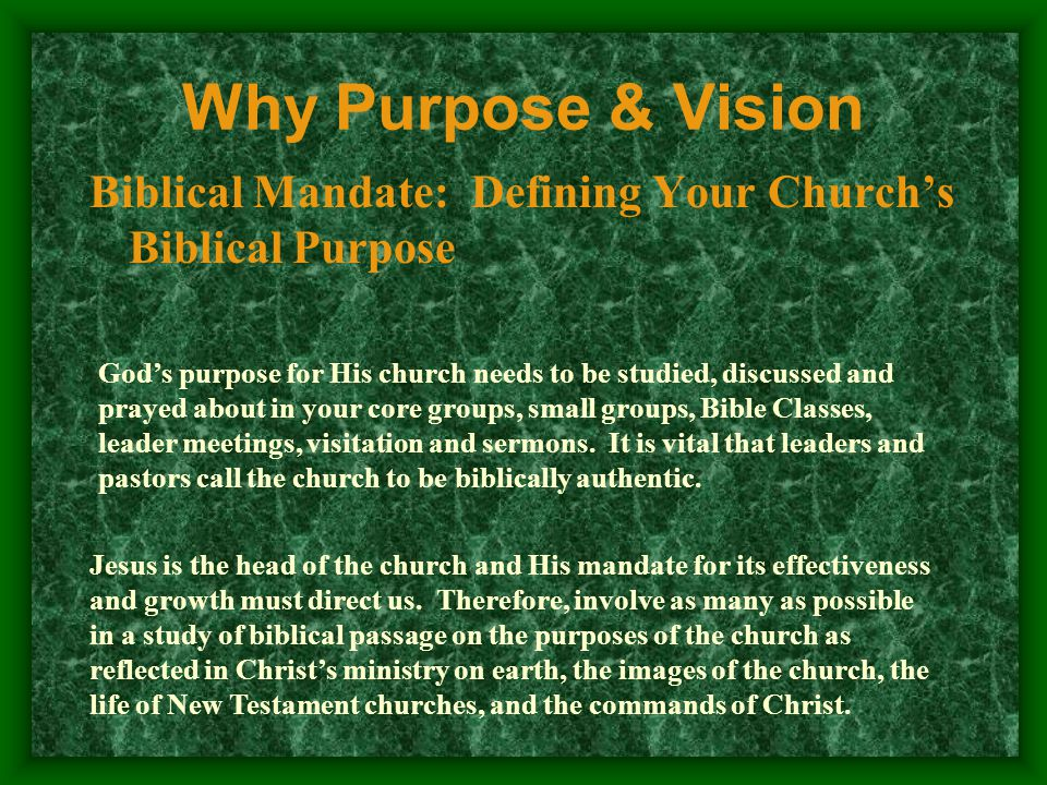 Vision: Seeing the Holy Spirit's Vision Why Purpose & Vision Praying that the Holy Spirit will give you a VISION of your church in 10 years.