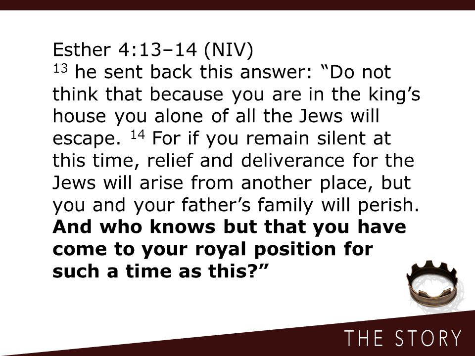 Esther 4:13–14 (NIV) 13 he sent back this answer: Do not think that because you are in the king's house you alone of all the Jews will escape.