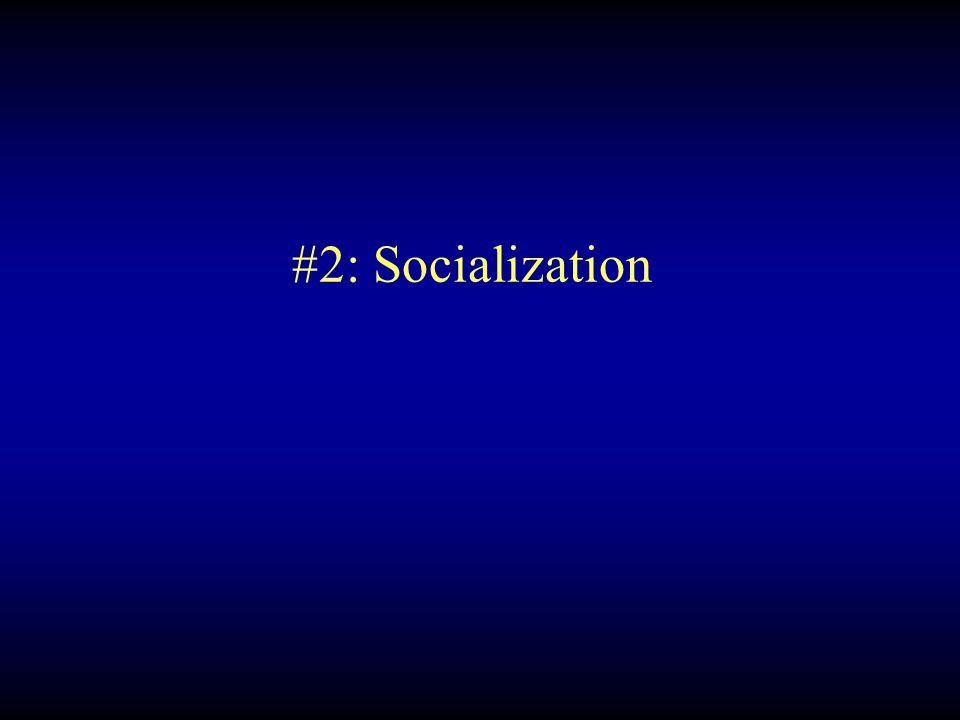 #2: Socialization
