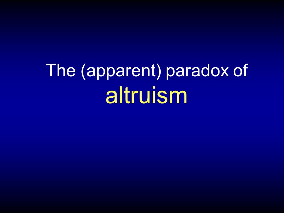 The (apparent) paradox of altruism