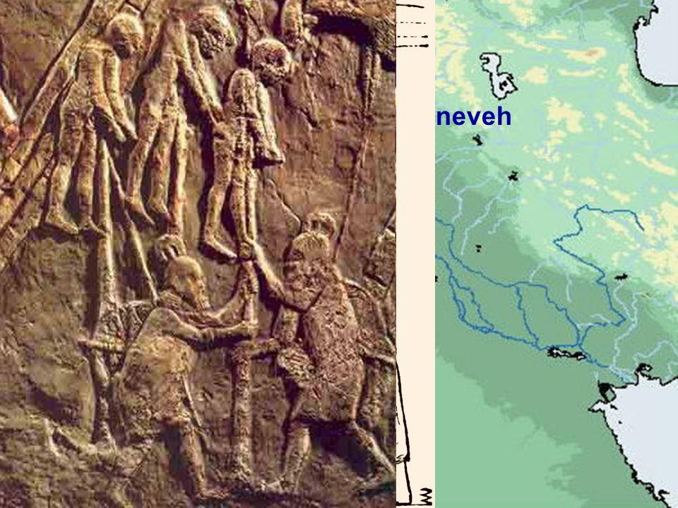Nineveh Joppa Jerusalem