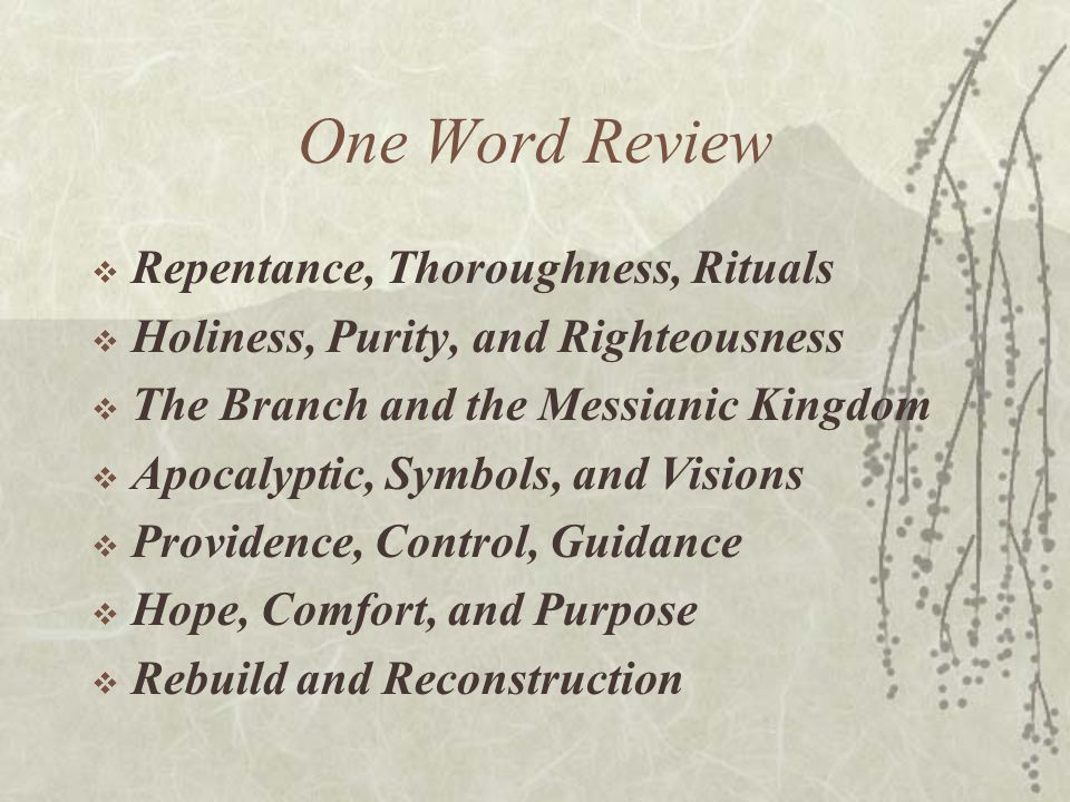 One Word Review  Repentance, Thoroughness, Rituals  Holiness, Purity, and Righteousness  The Branch and the Messianic Kingdom  Apocalyptic, Symbol