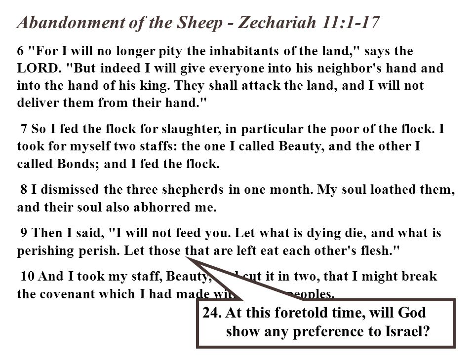 Abandonment of the Sheep - Zechariah 11:1-17 6