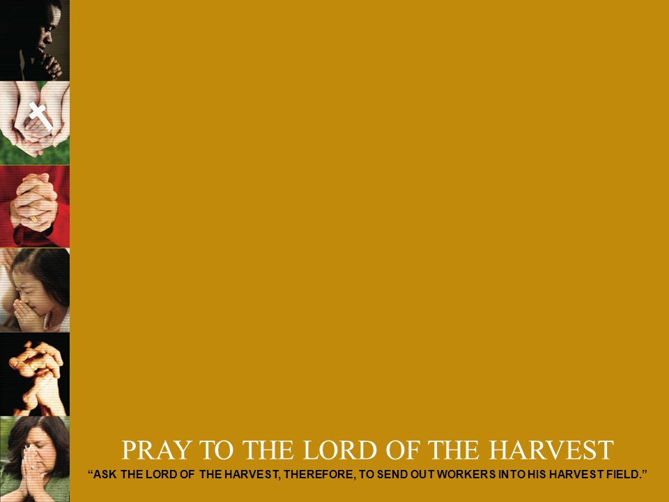 PRAY TO THE LORD OF THE HARVEST ASK THE LORD OF THE HARVEST, THEREFORE, TO SEND OUT WORKERS INTO HIS HARVEST FIELD.