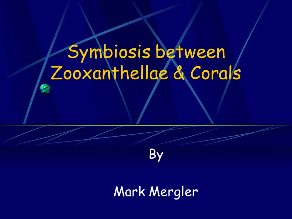 What are Zooxanthellae.