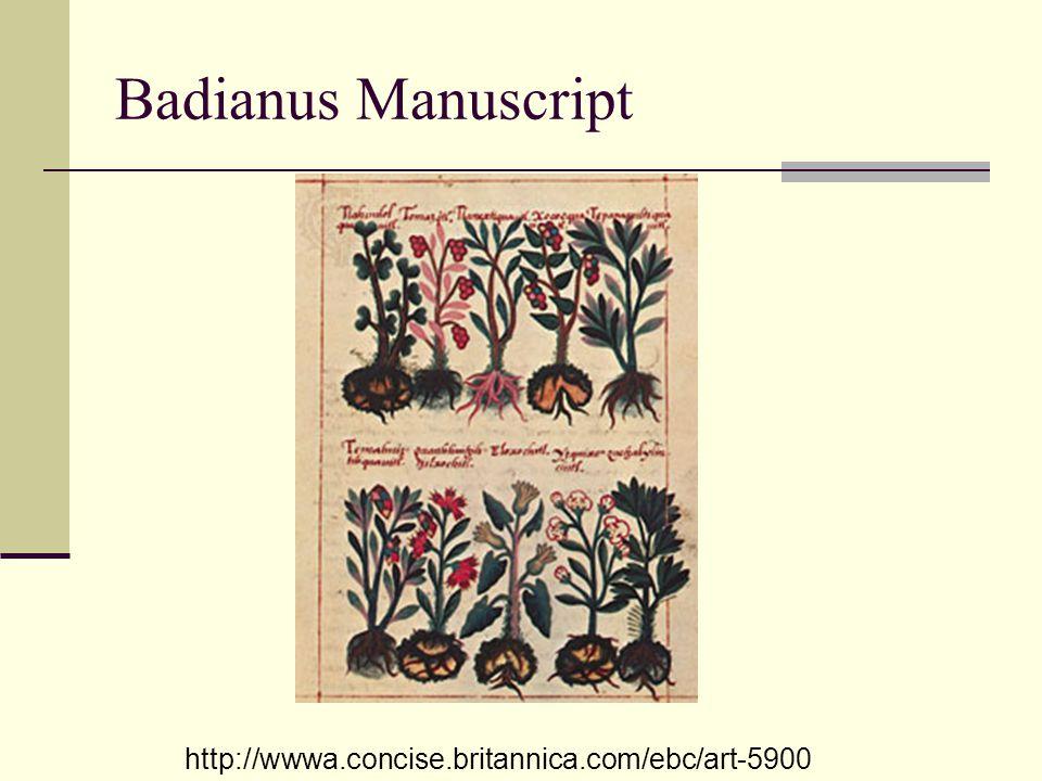 Badianus Manuscript http://wwwa.concise.britannica.com/ebc/art-5900