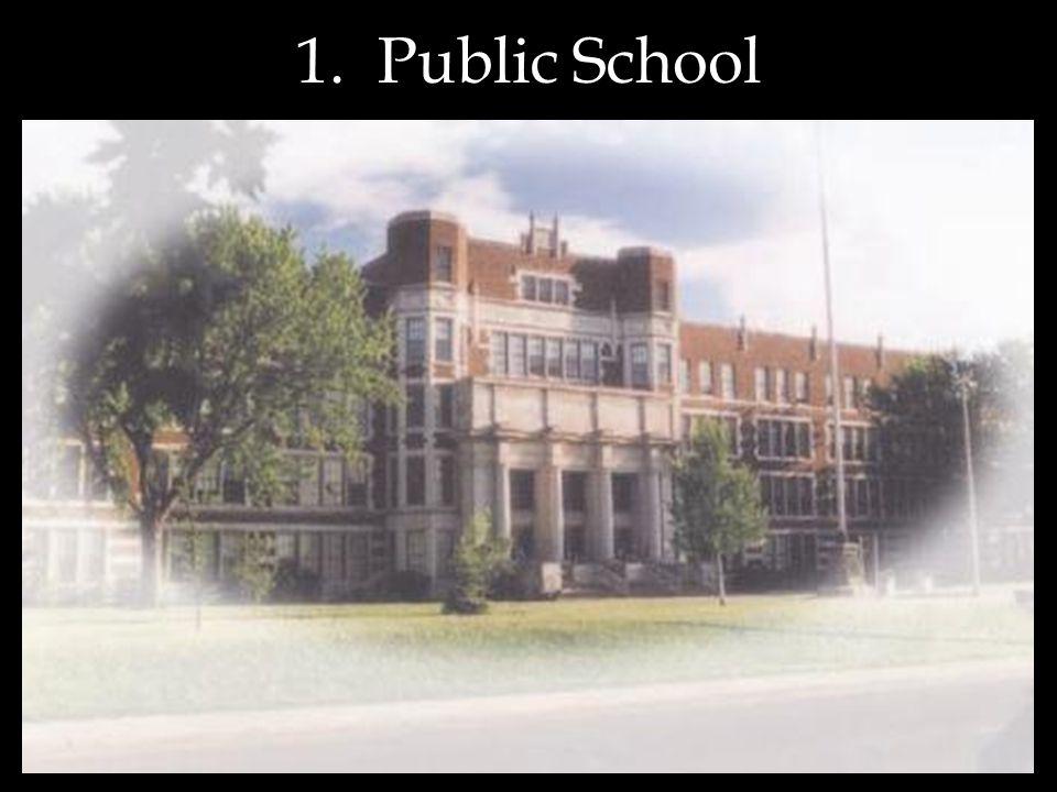 1. Public School
