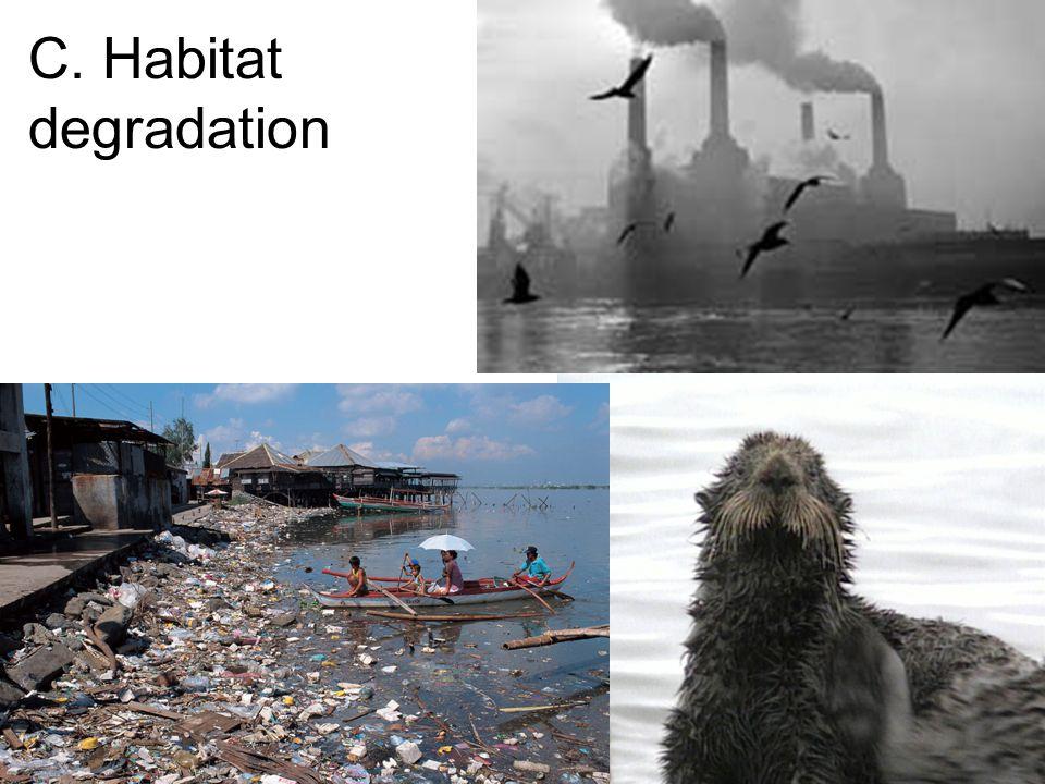 C. Habitat degradation