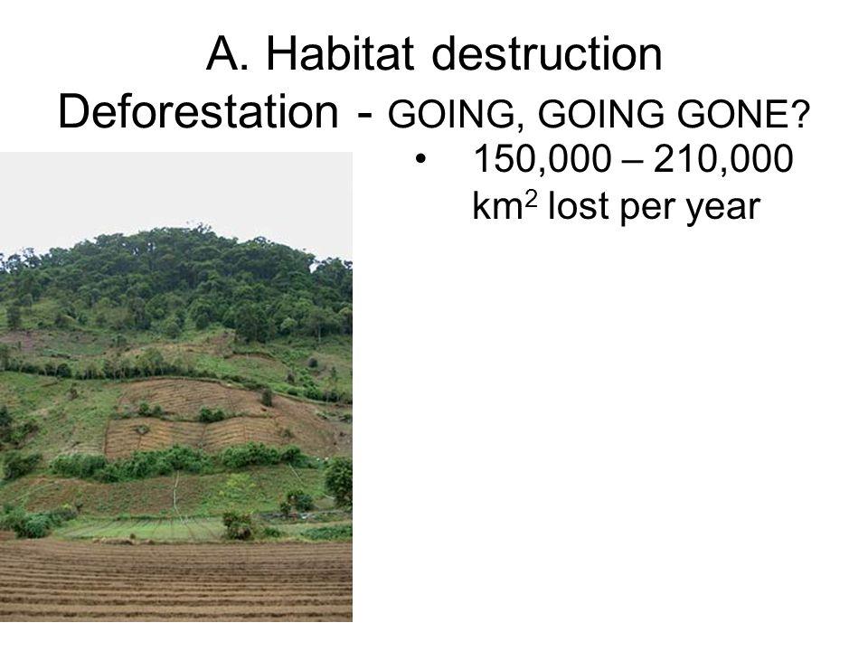 A. Habitat destruction Deforestation - GOING, GOING GONE? 150,000 – 210,000 km 2 lost per year