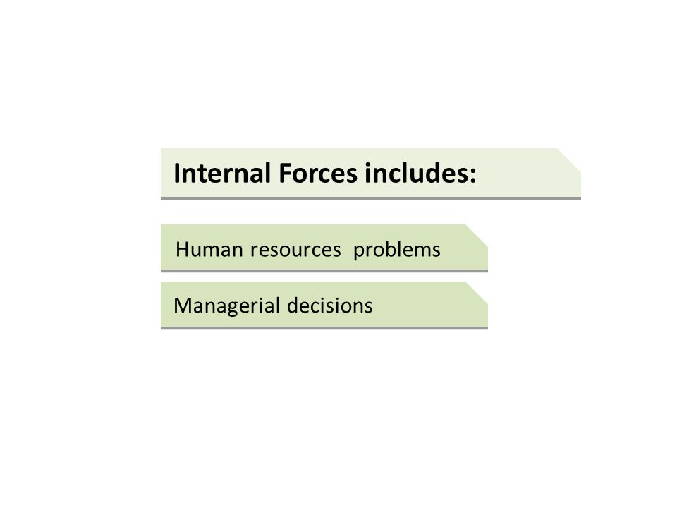 Internal Forces includes: Human resources problems Managerial decisions