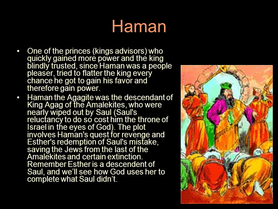 Haman One of the princes (kings advisors) who quickly gained more power and the king blindly trusted, since Haman was a people pleaser, tried to flatter the king every chance he got to gain his favor and therefore gain power.
