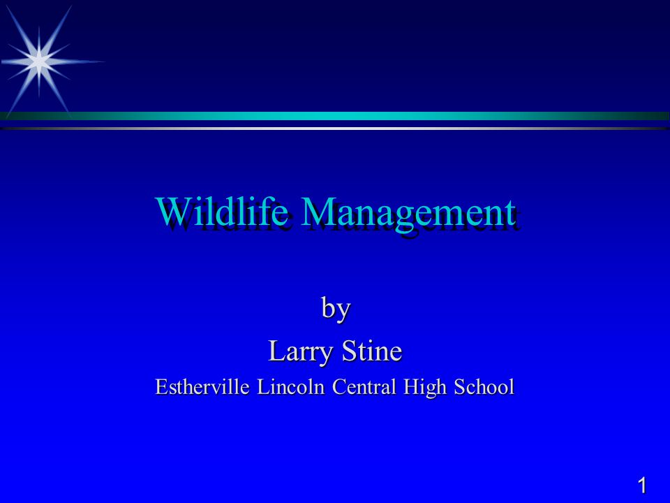32 Approved Practices - Stream Wildlife  Maintenance of population levels is important  Removal of unwanted species by:  netting  poisoning  electric shocking  Artificial rearing and stocking  Regulations of sport fishing