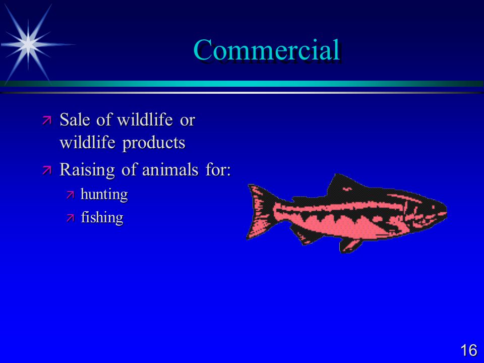 16 Commercial  Sale of wildlife or wildlife products  Raising of animals for:  hunting  fishing
