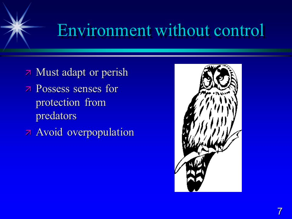 18 Biological  Value of the biological relationship between humans and wildlife is difficult to measure  Examples  Pollination of crops  Soil Improvement  Water conservation  Control of parasites