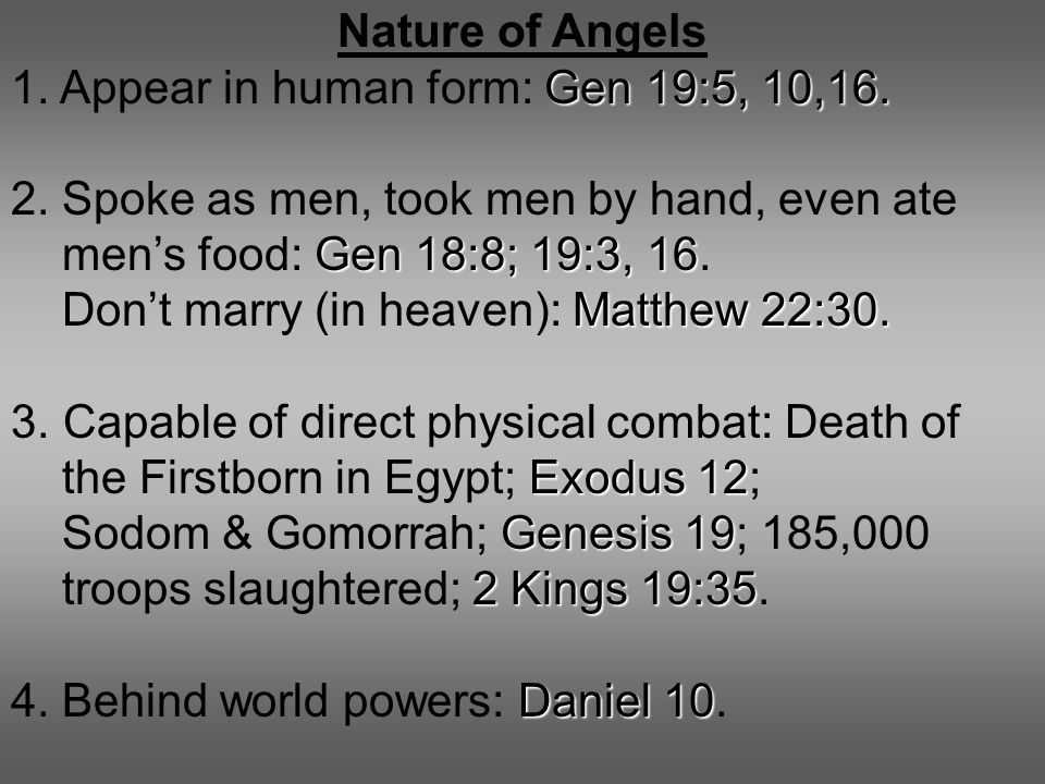 Nature of Angels Gen 19:5, 10,16. 1. Appear in human form: Gen 19:5, 10,16. 2. Spoke as men, took men by hand, even ate Gen 18:8; 19:3, 16 men's food: