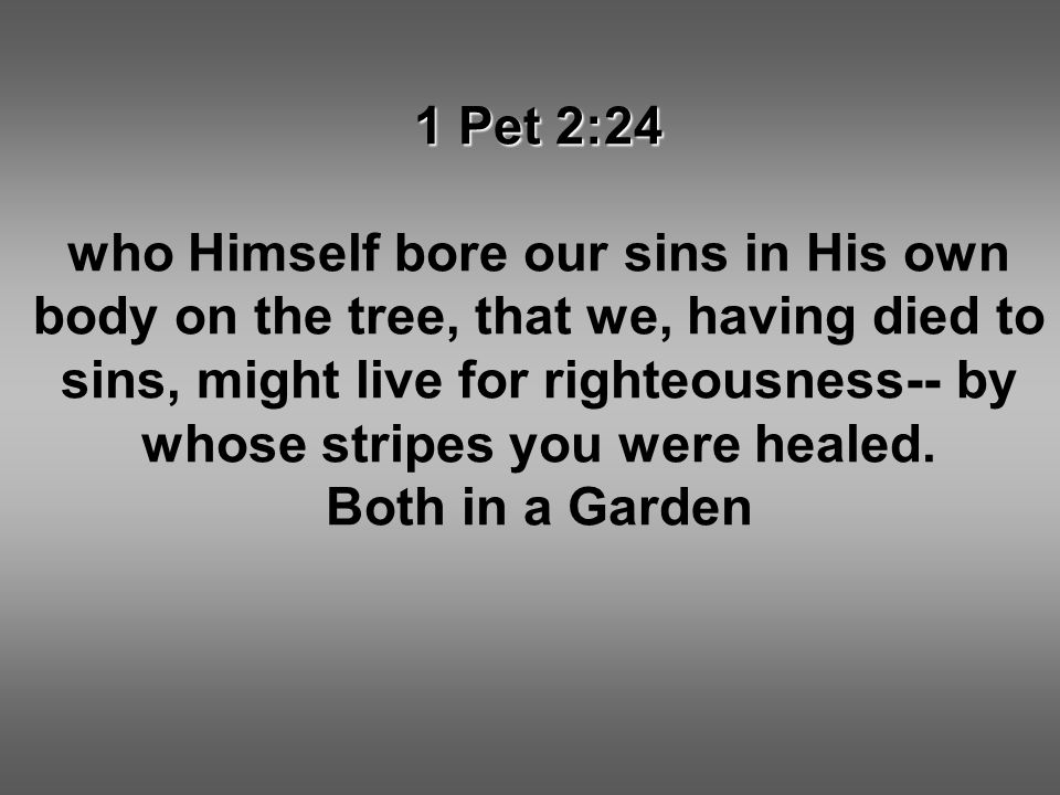 1 Pet 2:24 who Himself bore our sins in His own body on the tree, that we, having died to sins, might live for righteousness-- by whose stripes you were healed.