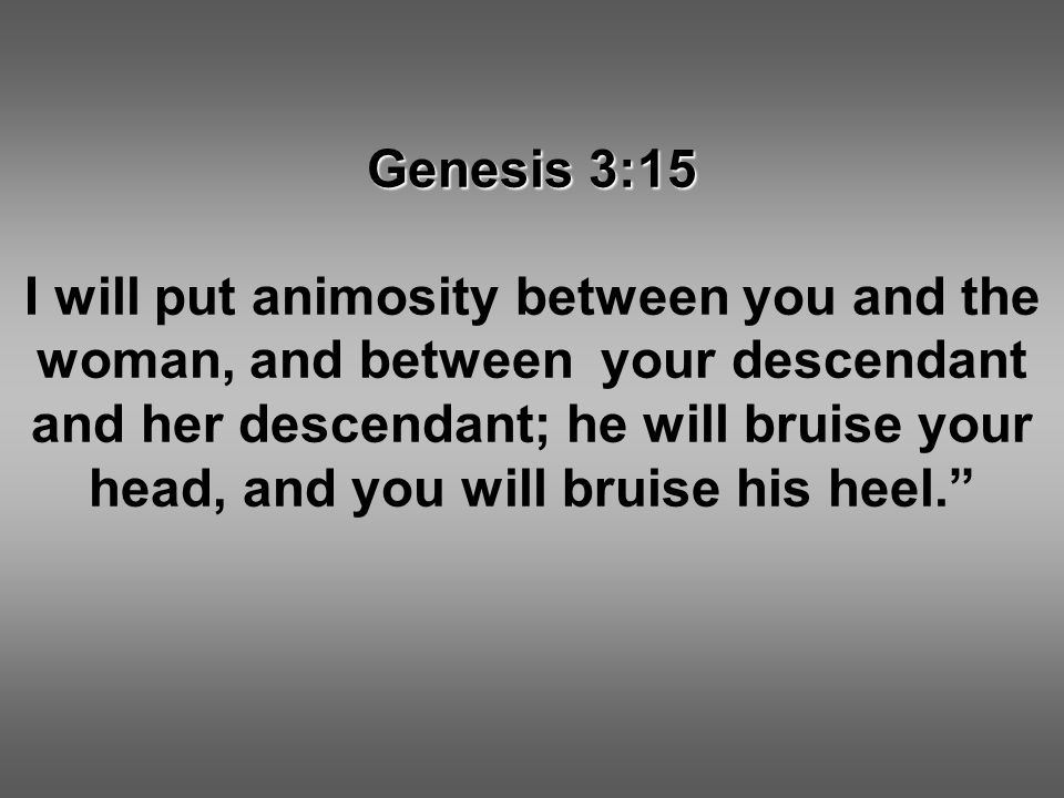 Genesis 3:15 I will put animosity between you and the woman, and between your descendant and her descendant; he will bruise your head, and you will bruise his heel.