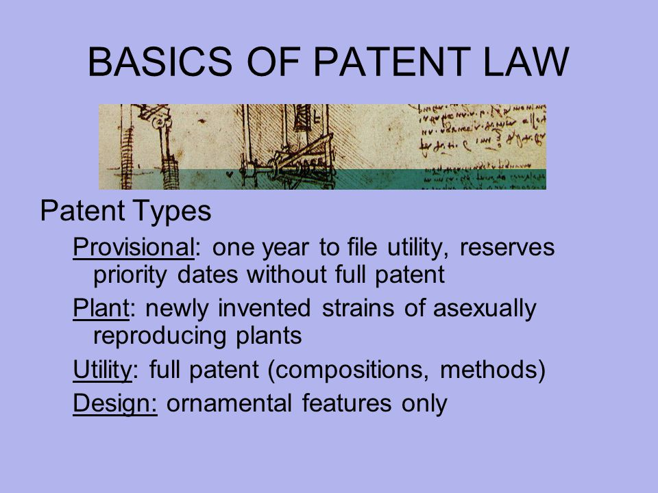 BASICS OF PATENT LAW Patent Types Provisional: one year to file utility, reserves priority dates without full patent Plant: newly invented strains of asexually reproducing plants Utility: full patent (compositions, methods) Design: ornamental features only