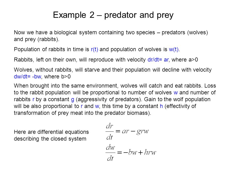 Example 2 – predator and prey Now we have a biological system containing two species – predators (wolves) and prey (rabbits). Population of rabbits in
