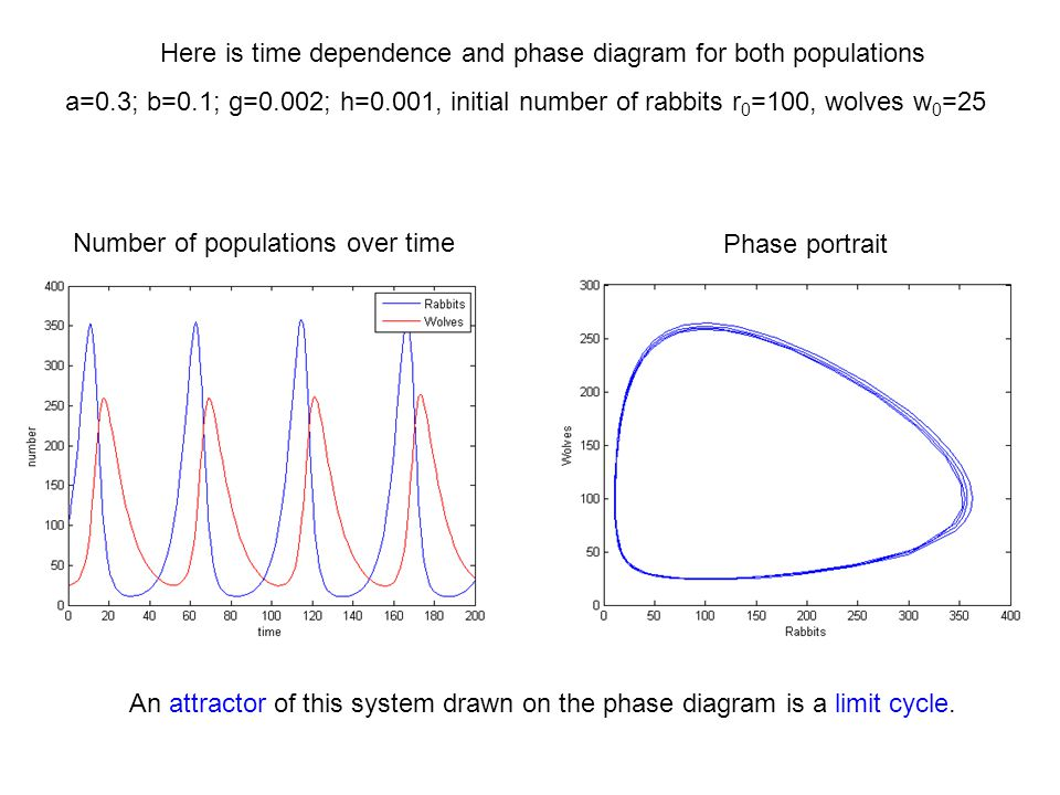 Here is time dependence and phase diagram for both populations a=0.3; b=0.1; g=0.002; h=0.001, initial number of rabbits r 0 =100, wolves w 0 =25 Numb