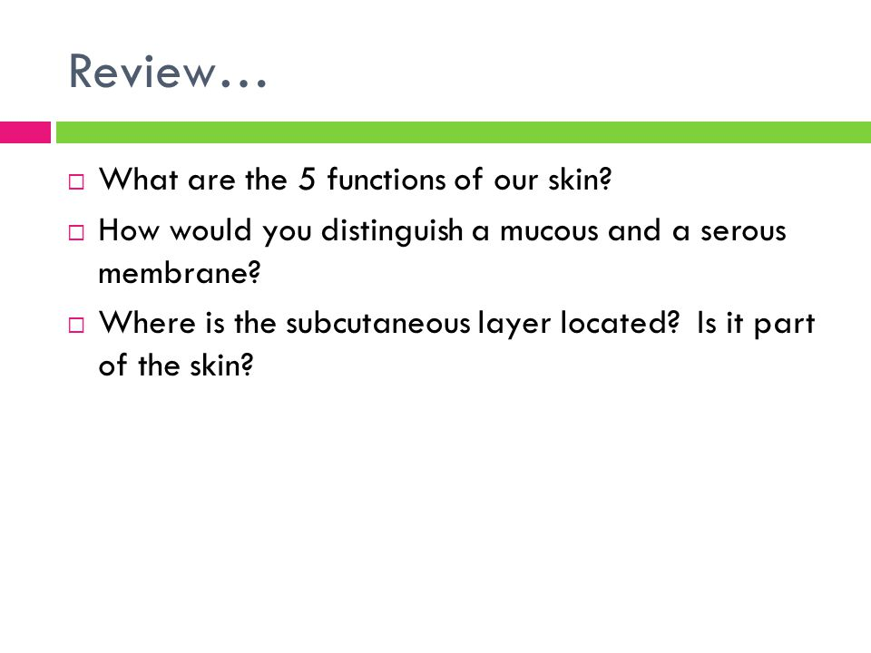 Review…  What are the 5 functions of our skin?  How would you distinguish a mucous and a serous membrane?  Where is the subcutaneous layer located?