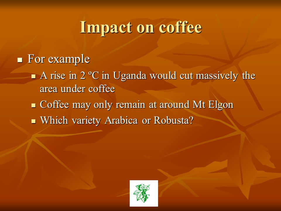 Impact on coffee For example For example A rise in 2 ºC in Uganda would cut massively the area under coffee A rise in 2 ºC in Uganda would cut massively the area under coffee Coffee may only remain at around Mt Elgon Coffee may only remain at around Mt Elgon Which variety Arabica or Robusta.