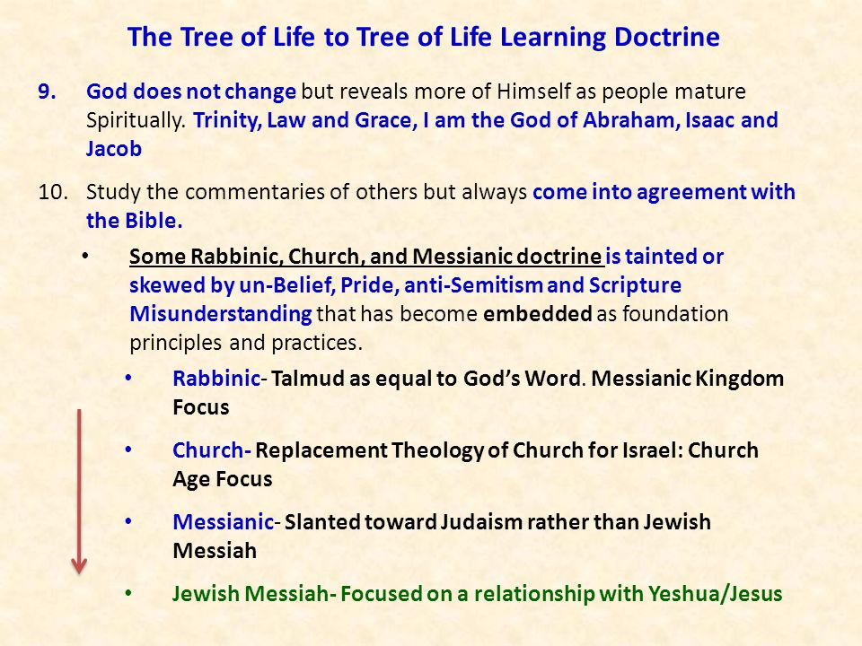 The Tree of Life to Tree of Life Learning Doctrine 9.God does not change but reveals more of Himself as people mature Spiritually. Trinity, Law and Gr
