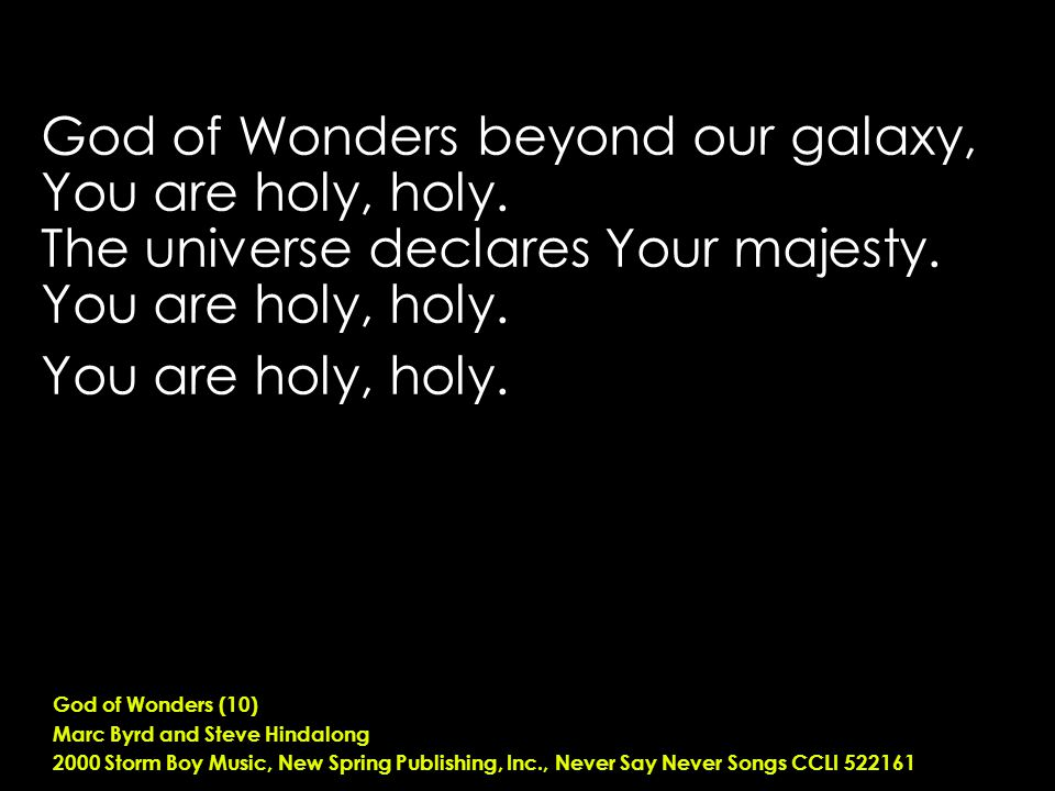 God of Wonders beyond our galaxy, You are holy, holy.