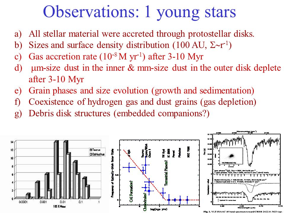 Observations: 1 young stars a)All stellar material were accreted through protostellar disks. b)Sizes and surface density distribution (100 AU,  r -1