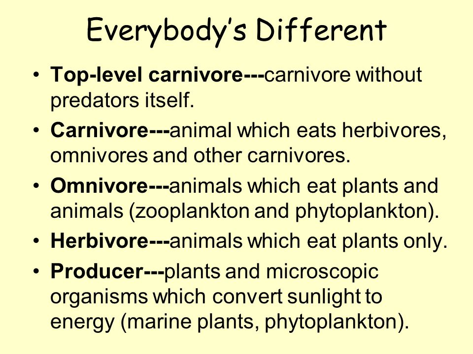Everybody's Different Top-level carnivore---carnivore without predators itself.