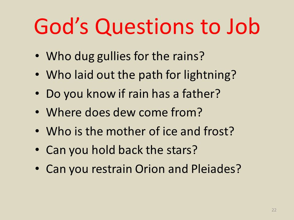 God's Questions to Job Who dug gullies for the rains.