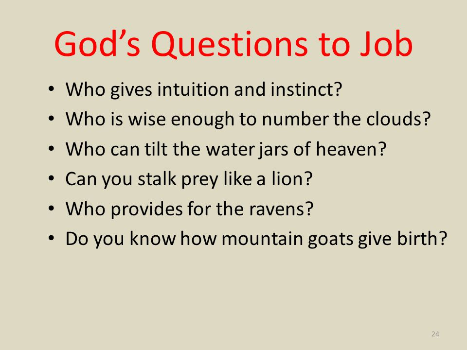 God's Questions to Job Who gives intuition and instinct.