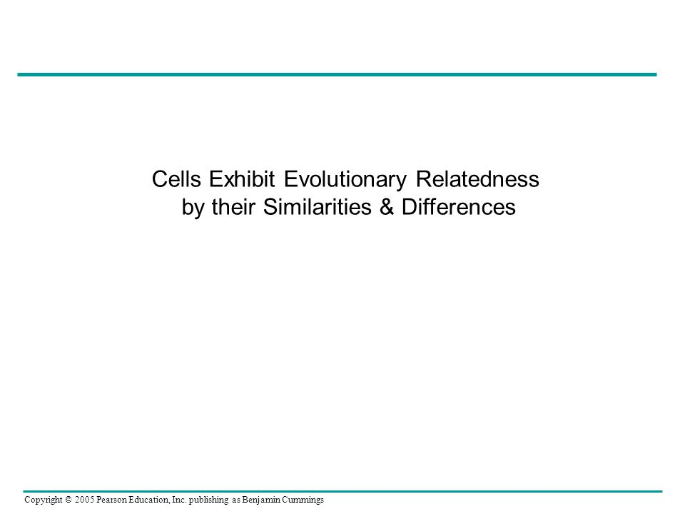 Copyright © 2005 Pearson Education, Inc. publishing as Benjamin Cummings Cells Exhibit Evolutionary Relatedness by their Similarities & Differences