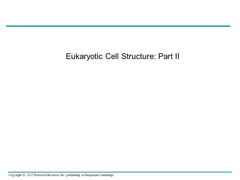 Copyright © 2005 Pearson Education, Inc. publishing as Benjamin Cummings Eukaryotic Cell Structure: Part II