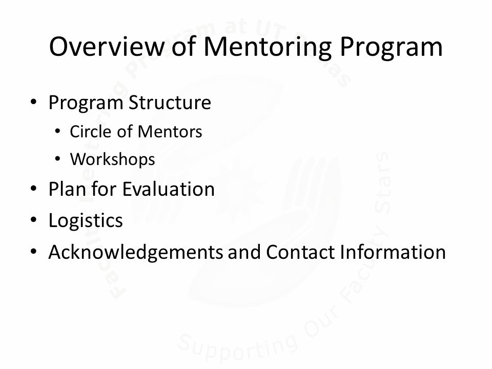 Overview of Mentoring Program Program Structure Circle of Mentors Workshops Plan for Evaluation Logistics Acknowledgements and Contact Information