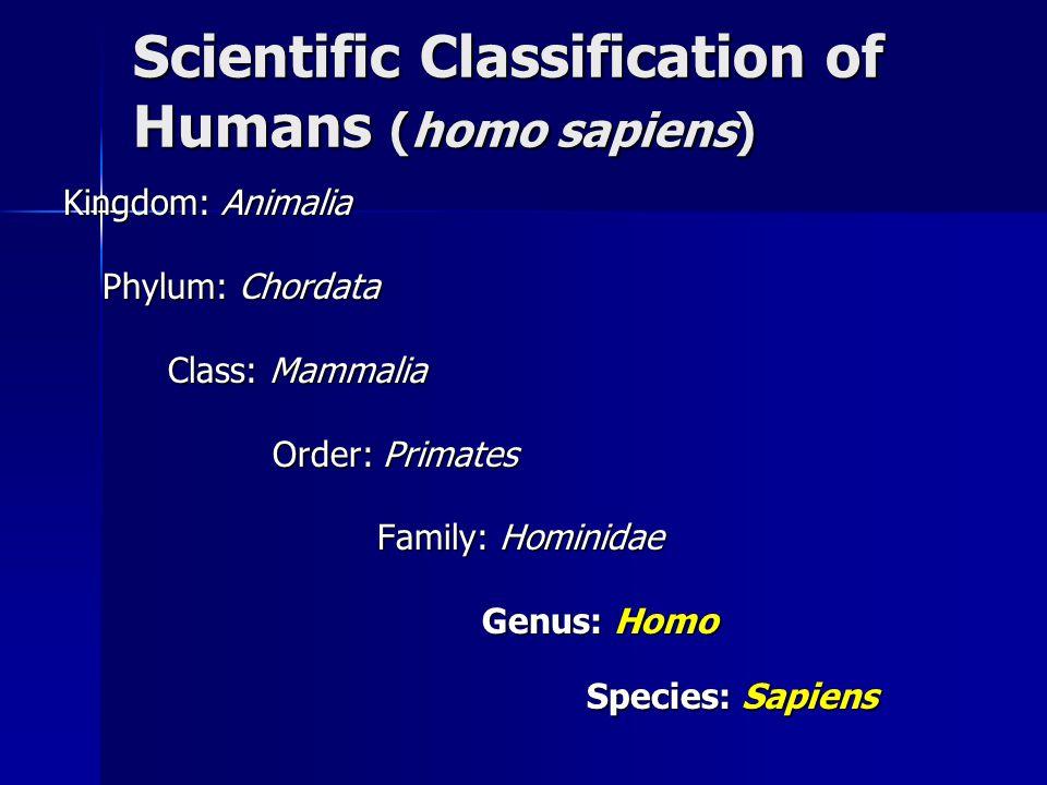 Scientific Classification of Humans (homo sapiens) Kingdom: Animalia Phylum: Chordata Class: Mammalia Order: Primates Family: Hominidae Genus: Homo Species: Sapiens