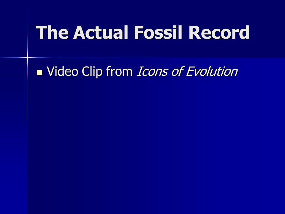The Actual Fossil Record Video Clip from Icons of Evolution Video Clip from Icons of Evolution
