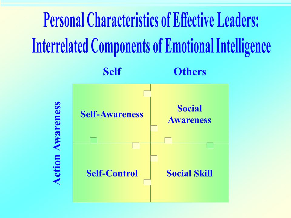 Self-Awareness Self-Control Social Awareness Social Skill SelfOthers Action Awareness