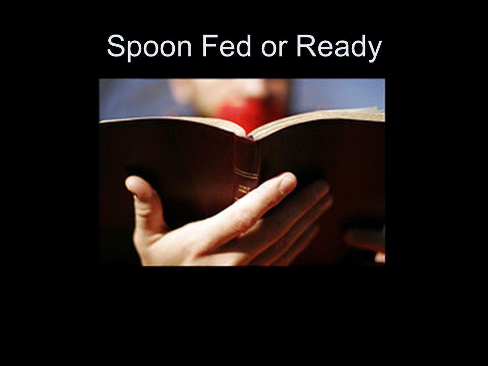 Spoon Fed or Ready