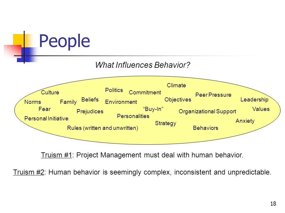 18 People What Influences Behavior? Culture NormsEnvironment Rules (written and unwritten) Family Politics Leadership Personal Initiative Behaviors Pe
