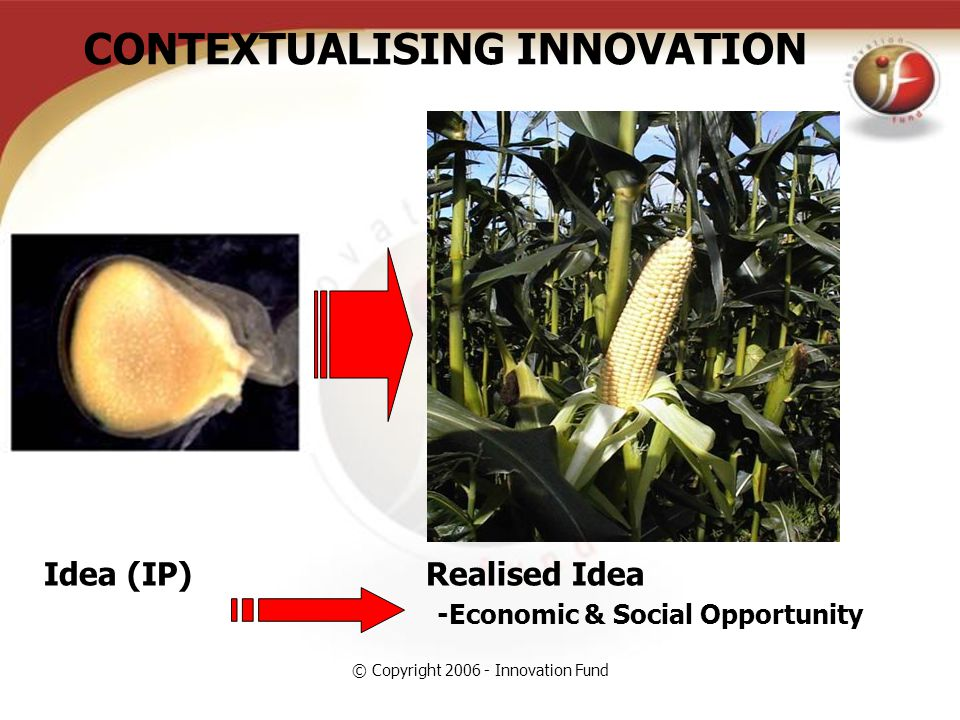 © Copyright 2006 - Innovation Fund Idea (IP) Realised Idea -Economic & Social Opportunity CONTEXTUALISING INNOVATION