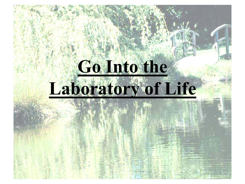 Go Into the Laboratory of Life